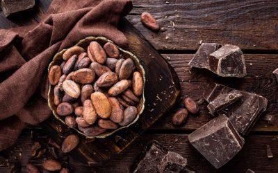 IL CIOCCOLATO, dal cacao alla tavoletta