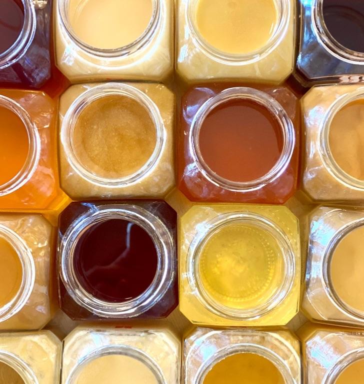 tipi-di-miele-uniflorale-colore-mieli-thun