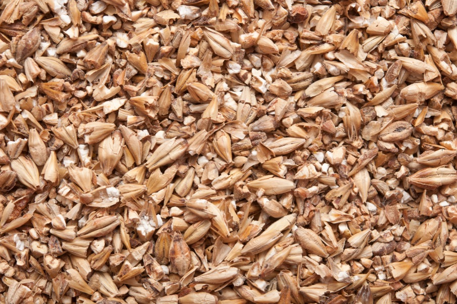 birra-ingredienti-cereali-orzo